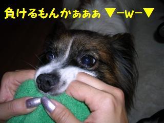 20050905214747.jpg