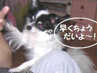 20050916130019.jpg
