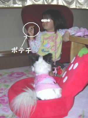 20060120234358.jpg