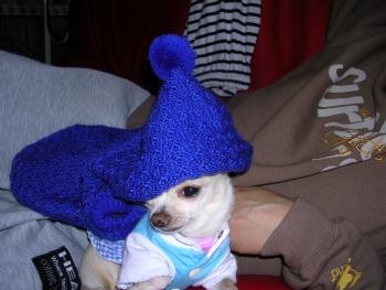 とんがり帽子~