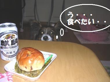 パン見つけたぁぁぁ!