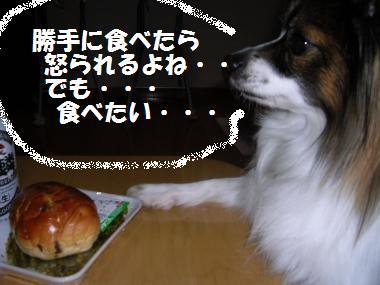 おいしそう・・・食べたい・・・