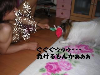 DSCN5184.jpg