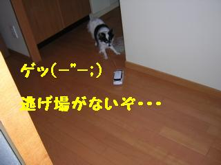 DSCN6134.jpg