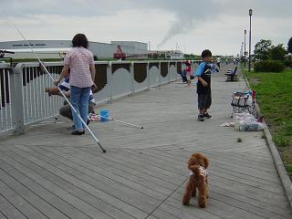 20050710-5.jpg