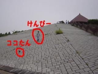 20050731-6.jpg