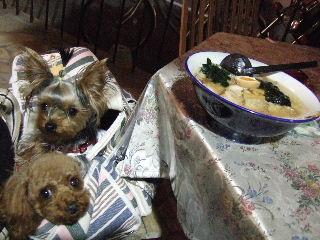 犬とラーメン