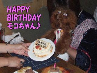 HAPPY BIRTHDAY モコちゃん