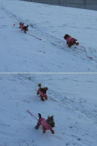 雪の上をダッシュ!