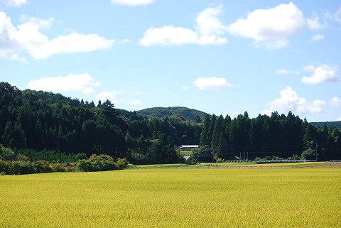里山の風景秋