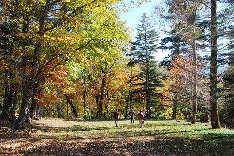 鳥ヶ池キャンプ場