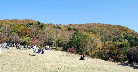 面ノ木峠の風景