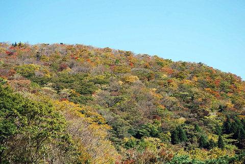 面ノ木峠の山の紅葉