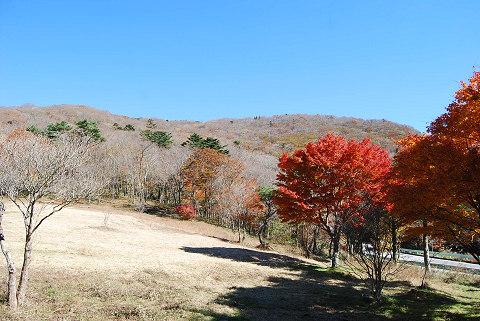 晩秋の面ノ木峠