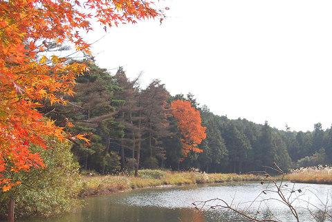 湿原奥の池