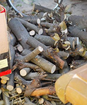 雑木の薪作り