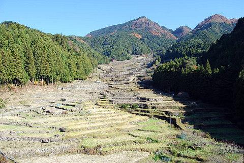 千枚田の絶景