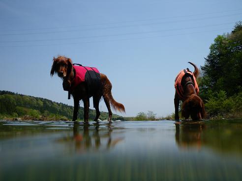 川でピクニック 040