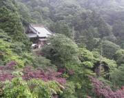ooyama++1_convert_20090618195448.jpg