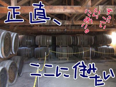 DSCF6315_20080914212029.jpg