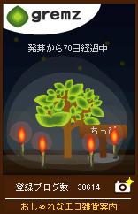 1246532562_02470.jpg