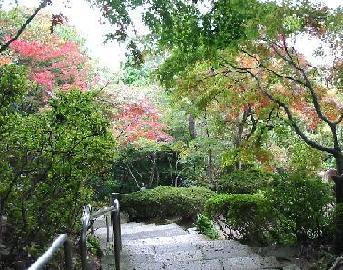 八幡山 2
