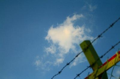「柵の向こうに」
