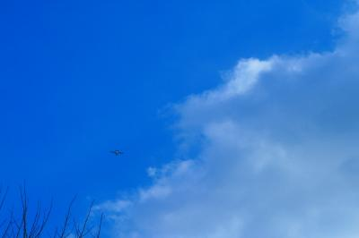 「飛行機」