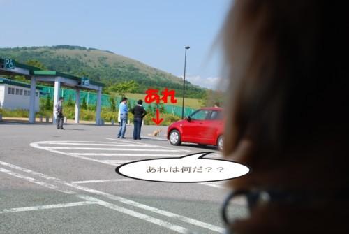 1DSC_0877.jpg