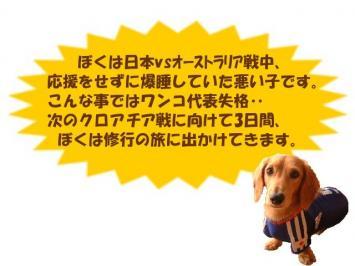 20060614134505.jpg