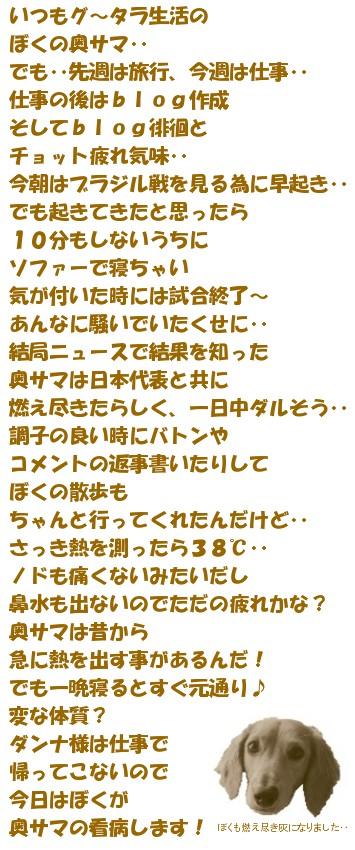20060623203209.jpg