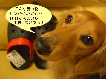 CIMG0138070324.jpg