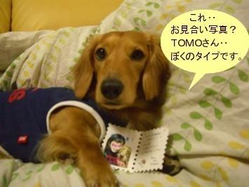 CIMG0147070324.jpg