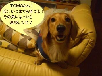 CIMG0152070324.jpg