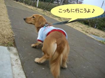 CIMG0198070325.jpg