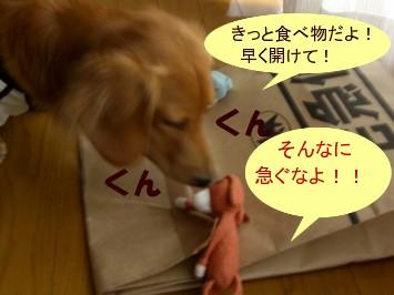 CIMG3205.jpg