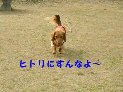 20070324014032.jpg