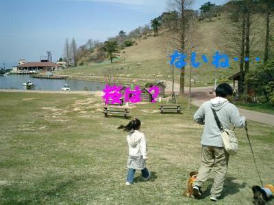 20070407231402.jpg