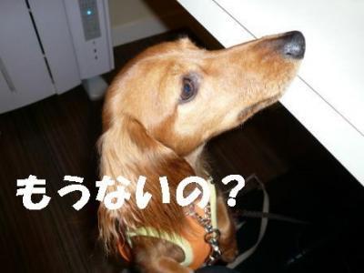 20071021004206.jpg