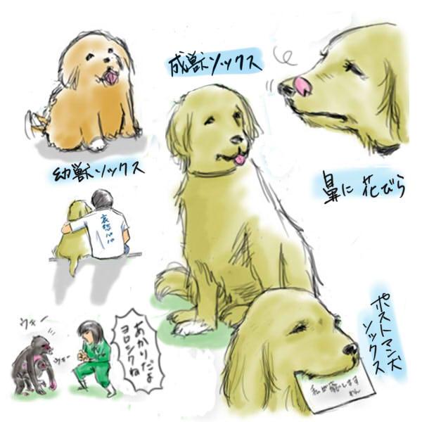 inutowatashi.jpg