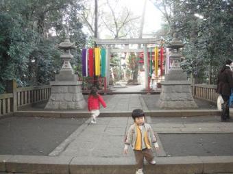地元の神社さん