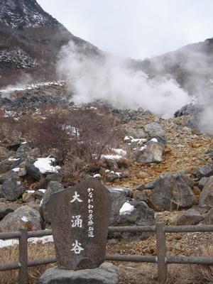 2008030241.jpg
