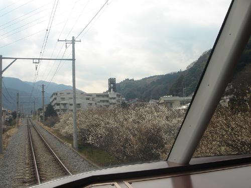 2008030257.jpg