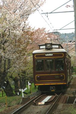 2008041358.jpg