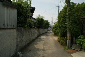 2008080719.jpg