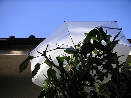 青い空、白い傘