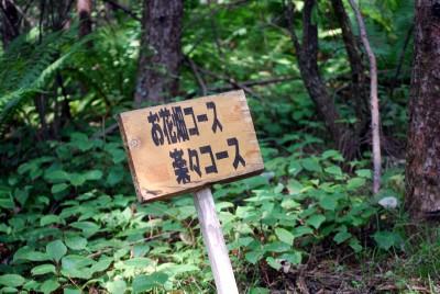軽井沢 086