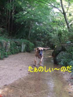 森林公園02