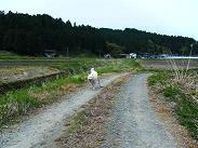 走るシロ2