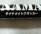 P1010075.jpg